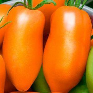 Перцевидный оранжевый